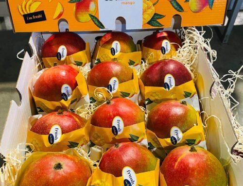 Seguimos apostando por los productos tropicales, bajo nuestra marca Fruish