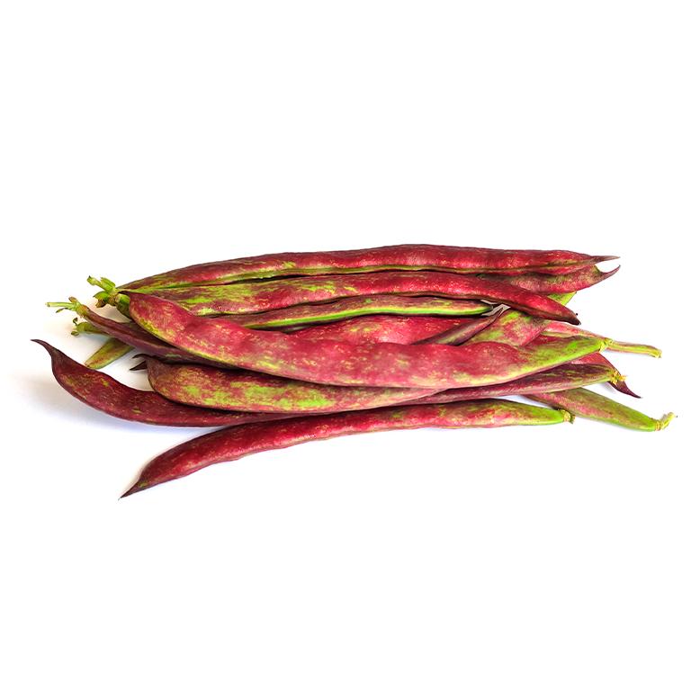 Judía Perona Roja Agroponiente