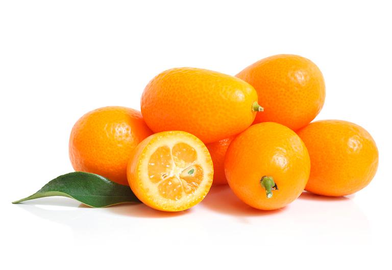 Kumquat Agroponiente