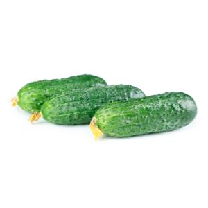 Pepino Español Agroponiente