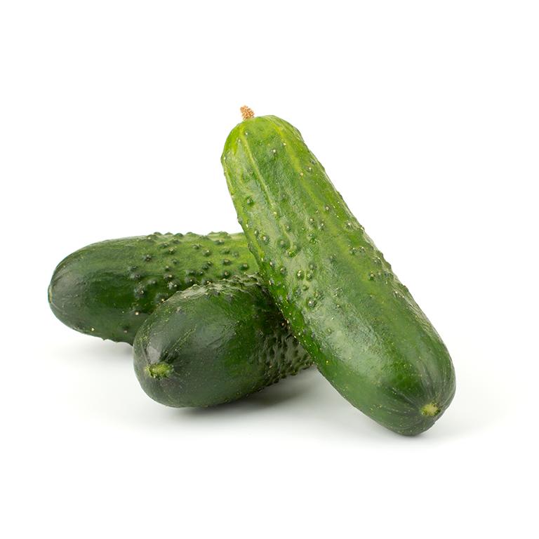 Pepino Francés Agroponiente