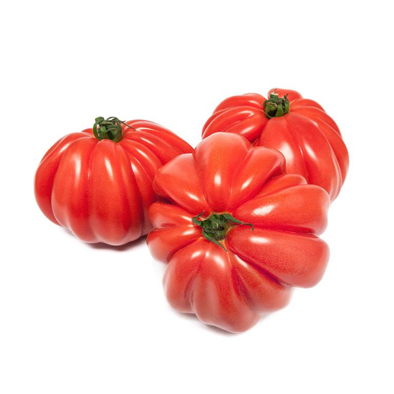 Tomate Corazón de Buey Agroponiente