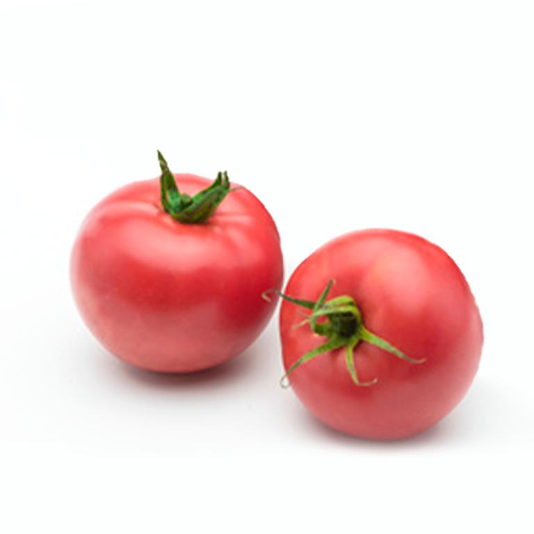 Tomate Japonés Agroponiente