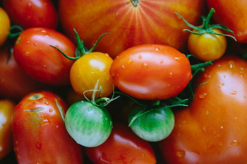 Tomate. Agroponiente, líden en frutas y verduras