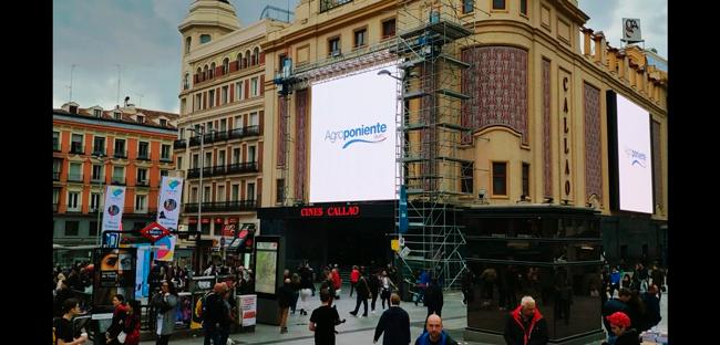 Satisfechos con la promoción de 'Almería, Capital Española de la Gastronomía' en Callao (Madrid)