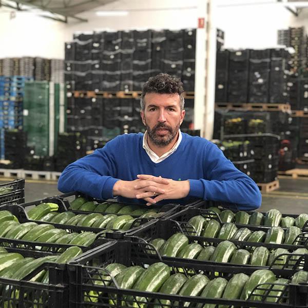 """José Castañeda subraya que """"desde hace tiempo, entre octubre y enero, el volumen de producción de calabacín en el Campo de Níjar supera al del Poniente"""""""