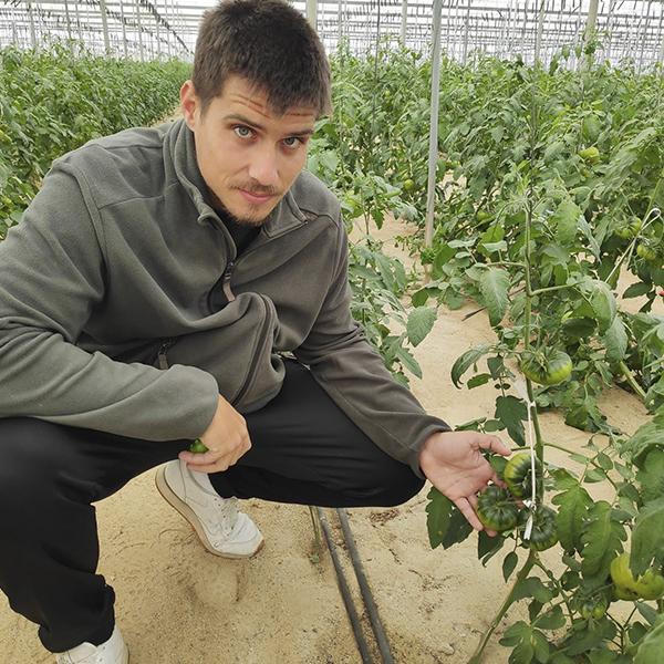 """Joaquín Pérez Sola, productor de Raf: """"El estrés al que se somete a la planta es lo que provoca que el Raf tenga ese sabor tan característico"""""""