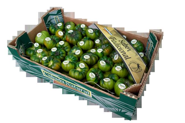 Segunda Campaña de la línea de Tomate Verde y Raf